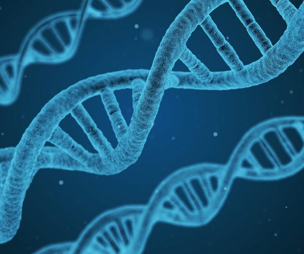 China and CRISPRs